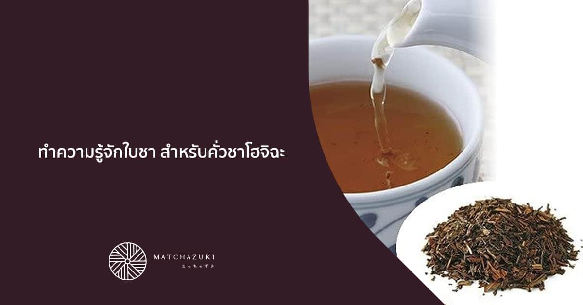 ทำความรู้จักใบชา สำหรับคั่วชาโฮจิฉะ