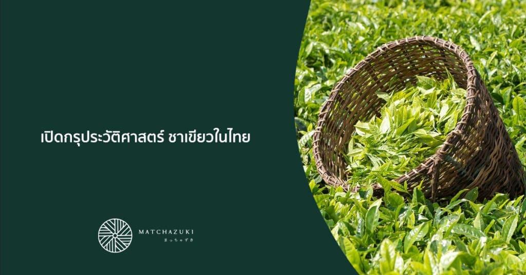 เปิดกรุประวัติศาสตร์ ชาเขียวในไทย
